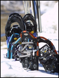 Snowshoes ready for a day of fun!